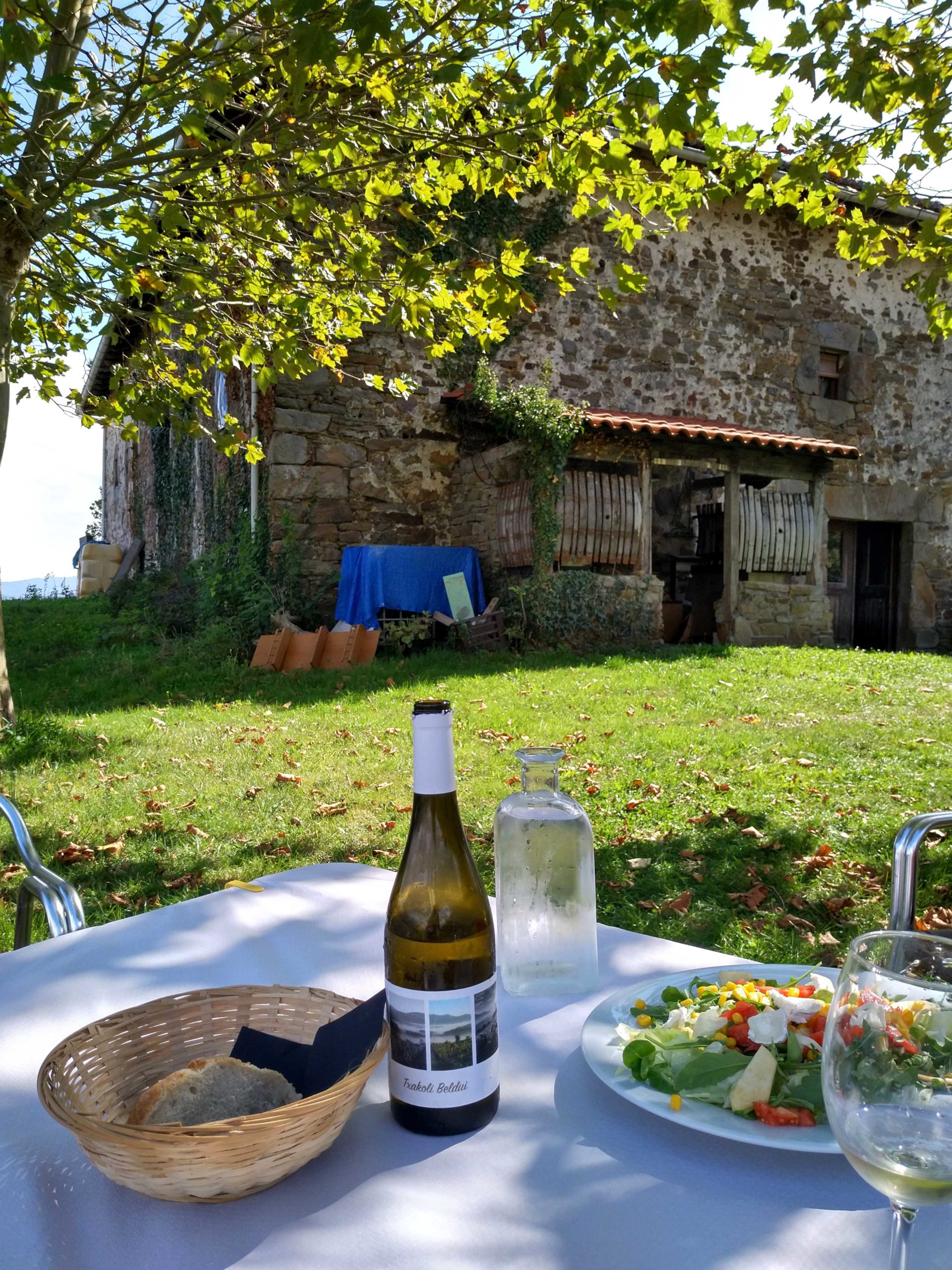 Tour de txakoli, vinos y quesos